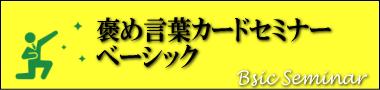 seminar_basic